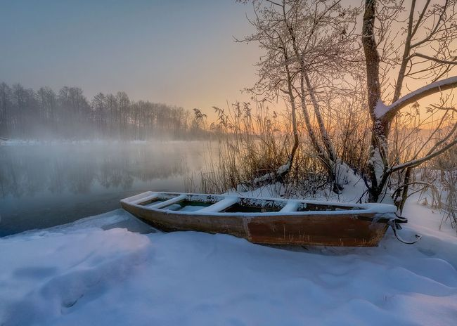 Cold Temperature Winter Fog Snow Landscape Tree Lake Scenics Water Tranquility Beauty In Nature No People Reflection Tranquil Scene Frozen Nature Mountain Environment Frost Wrapped