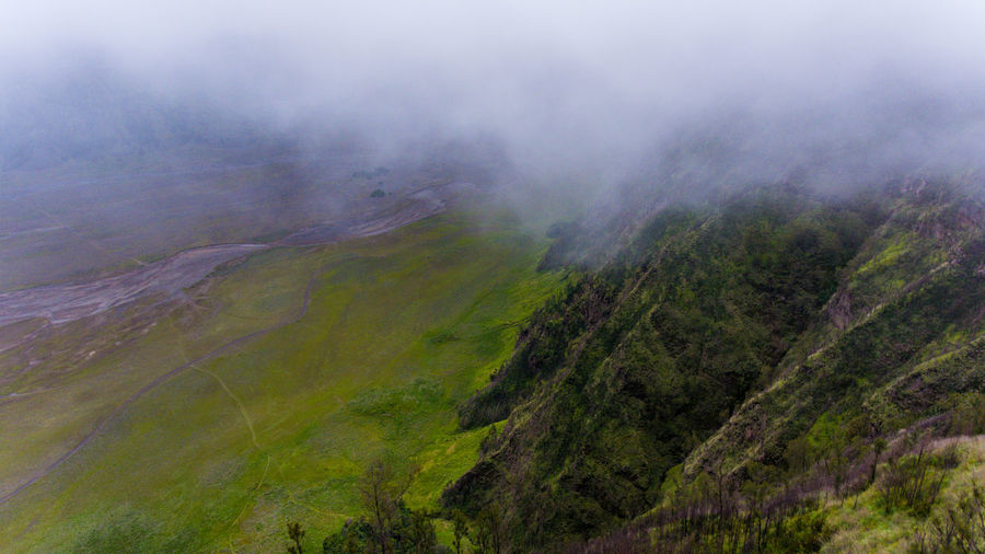 Slope of misty mountains, Bromo. Beauty In Nature Scenics - Nature Tranquil Scene Tranquility Environment Fog Landscape No People Non-urban Scene Nature Day Mountain Plant Land Tree Remote High Angle View Idyllic Green Color Outdoors Hazy  Forest Forest Photography Mountains Bromo