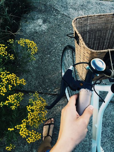 Likeforlike #likemyphoto #qlikemyphotos #like4like #likemypic #likeback #ilikeback #10likes #50likes #100likes #20likes #likere Love Bicykel Bicycle Trip FeelLonely Noonelovesme 60years