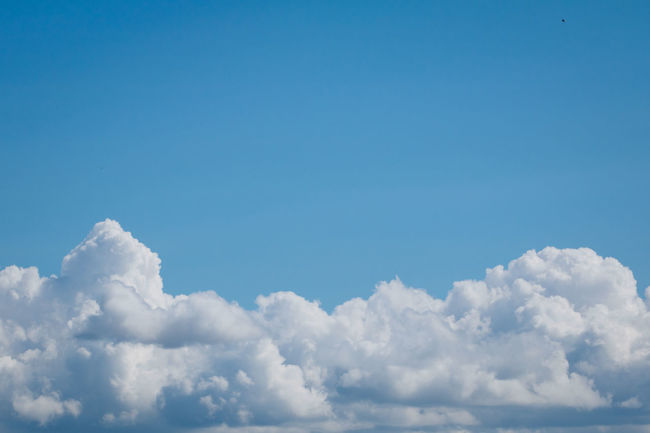 Backgrounds Beauty In Nature Blue Cloud - Sky Cloudscape Day Heaven Nature No People Outdoors Scenics Sky Sky Only Softness The Natural World Tranquil Scene Tranquility