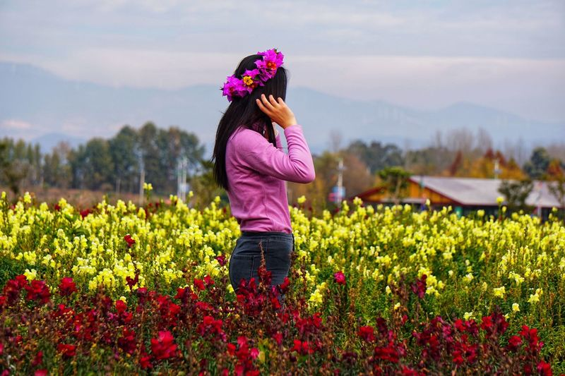 Flower Field Growth Beauty In Nature Nature One Person Plant