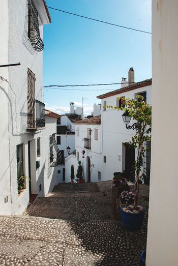 Altea Stairway Houses Alley Lane Village SPAIN Spanish Altea White Generic Architecture Building Exterior Architecture Built Structure Building Sky City Nature Residential District Day Street No People Outdoors