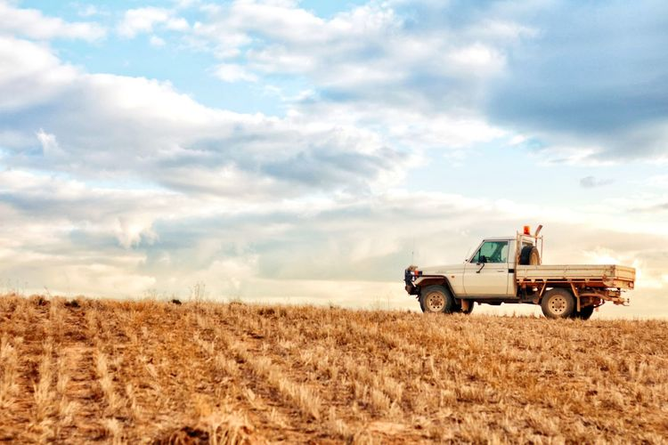 Australia Outback Country EyeEm Selects Combine Harvester Teamwork Cereal Plant Rural Scene Farmer Agriculture Field Agricultural Machinery Summer Crop  Cultivated Land Farm Farmland Agricultural Equipment Agricultural Field Plowed Field Wheat Rye - Grain Barley Ear Of Wheat