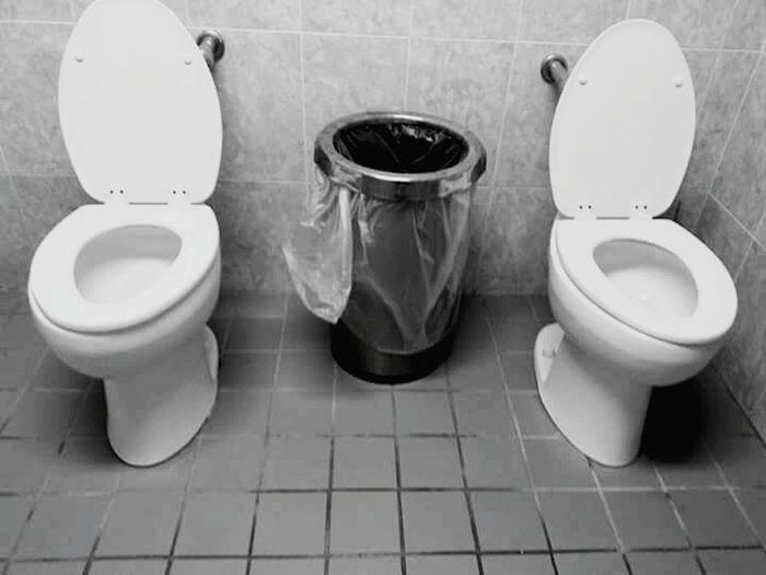 Toilet Bowl Bathroom Hygiene Domestic Bathroom Flushing Toilet Convenience Public Building Lid Indoors  Toilet Bidet Domestic Room Toilet Paper No People Urgency Day No Privacy