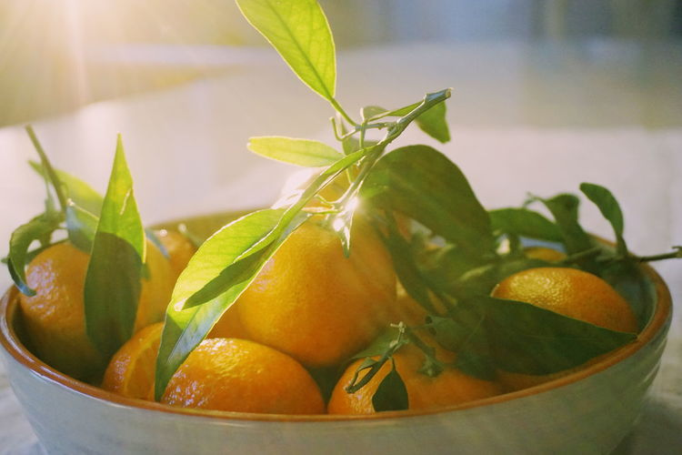Close-up of orange fruits in bowl on table