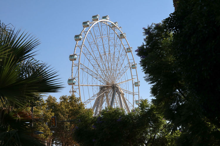 ferris wheel in the park against blue sky Tree Sky Amusement Park Amusement Park Ride Plant Ferris Wheel Low Angle View Arts Culture And Entertainment Nature No People Day Clear Sky Growth Outdoors Large Architecture Blue Built Structure Geometric Shape Fairground