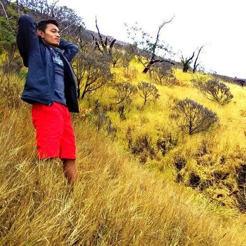 Nikmatilah ketenangan yang terdapat di ALaM sekitar anda, dan temukan kebahagiaan di dalamnya. GunungSlamet INDONESIA Instapic