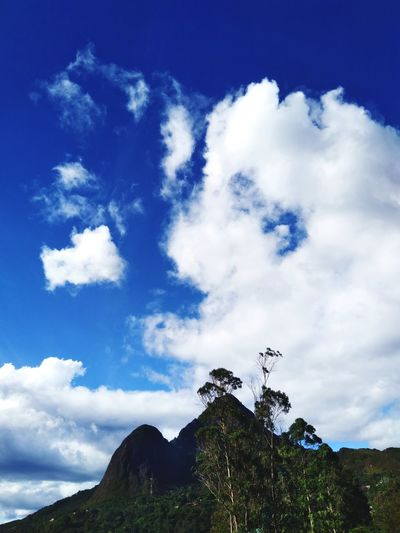 madre tierra Blue Tree Mountain Sky Cloud - Sky
