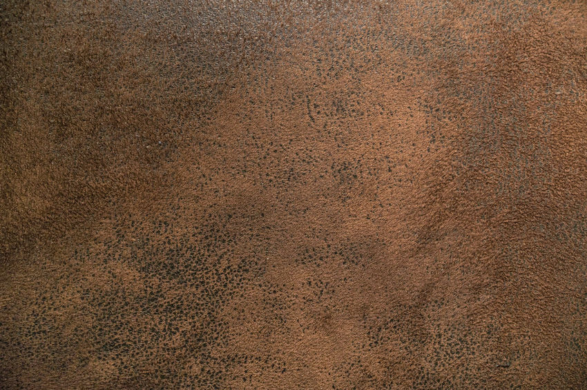 animal leather texture Abstract Backgrounds Brown Close-up Day Dirty Full Frame Material Nature No People Pattern Textured  Textured Effect Wallpaper