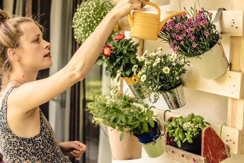 young watering flowers Florist Watering Can DIY At Home DIY EyeEm Selects Plant Women Potted Plant One Person Lifestyles Adult Real People Flower Growth Leisure Activity Flowering Plant Young Adult Flower Pot Gardening Standing Planting Bouquet