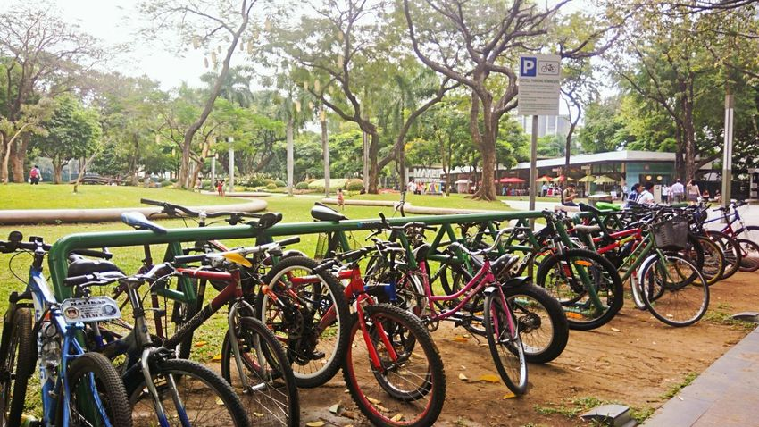 Bisikleta Urban Landscape Bicycles Cityscapes Street