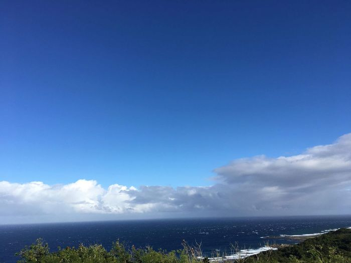 Sea Blue Cloud