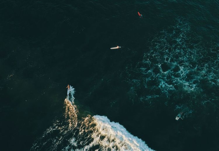 Surfing dron shoot Wave Ocean Dronephotography Surfing Surf Ocean Water Nature High Angle View Sea Beauty In Nature Day Waterfront