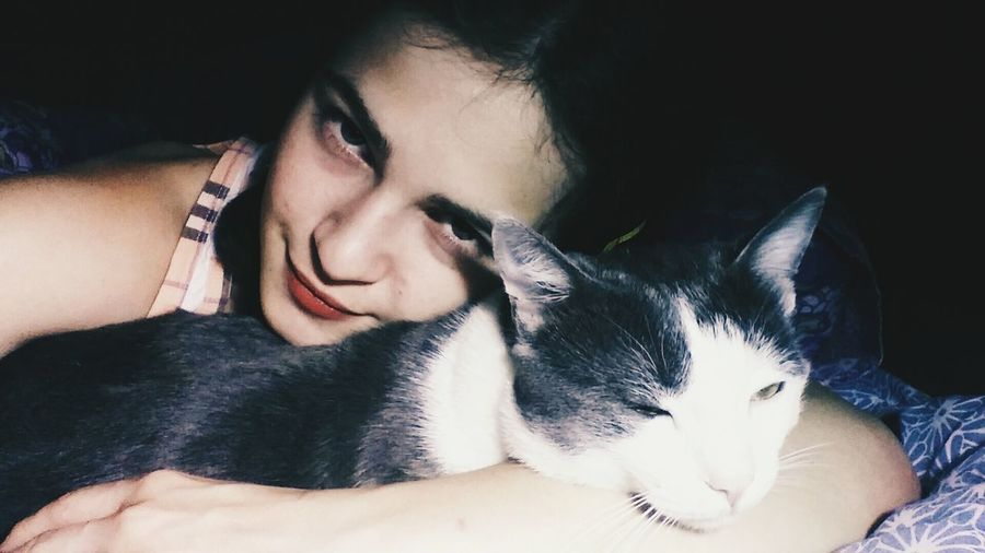 ფისო პიზა გრრ My Sweet Cat