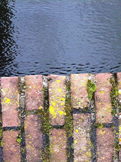 Water And Bricks