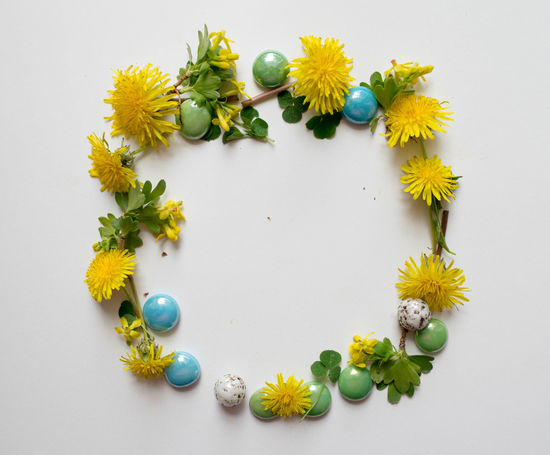 Alphabet Beauty In Nature Border Circle Close-up Day Flower Flower Head Fragility Frame Freshness Leaf Letter Letter O Multi Colored Nature No People O Petal Plant Shape Studio Shot White Background Wreath Yellow