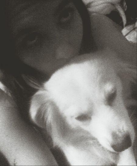 Me and kuddlez. Dog Life Dawh