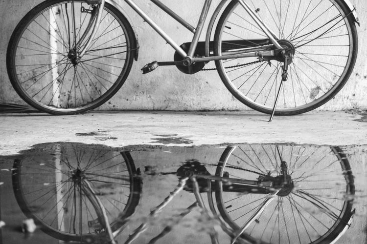 View of bicycle