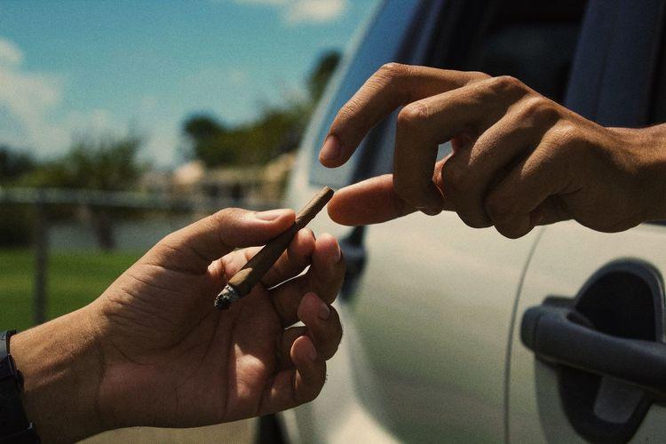 Cropped image of hand holding marijuana joint