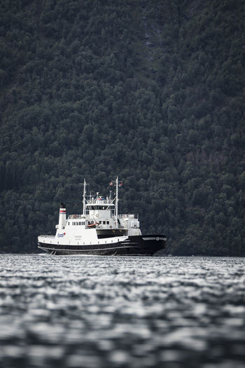 Sailboat sailing on sea against trees