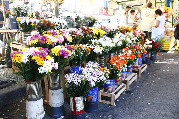 Arrangement Beauty In Nature Choice Day Florist Flower Flower Head Flower Market Flower Shop For Sale Fragility Freshness Large Group Of Objects Market Multi Colored Nature Outdoors Plant Real People Retail  Springtime Store Variation