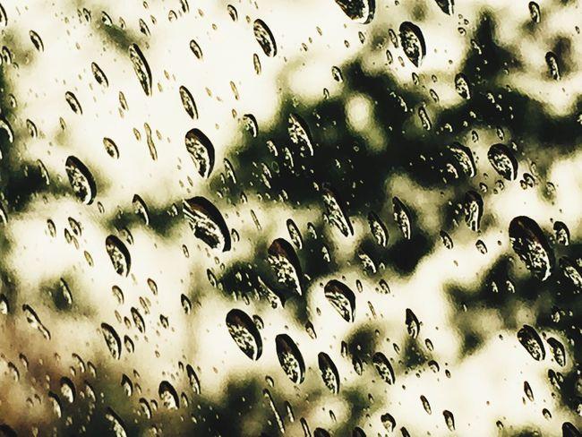 Rainy Days Highway Black And White