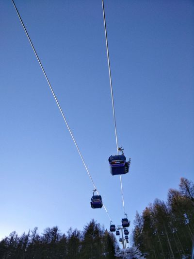 Low Angle View Tree Clear Sky No People Sky Outdoors Nature Day Gondola Ski Lift Austria Sölden Tirol  öztal Gaislachkogl