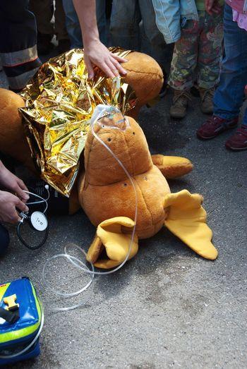 First Aid Children's Hospital  Stuffed Toy Elch Stofftier Children Rettungsdienst Medicine