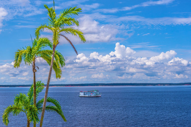 Scenic View of the River Beach Beauty In Nature Blue Cloud - Sky Day Horizon Over Water Landscape Nature Nautical Vessel No People Outdoors Palm Tree Rio Negro River Scenics Sky Tranquil Scene Tranquility Tree Tropical Climate Water