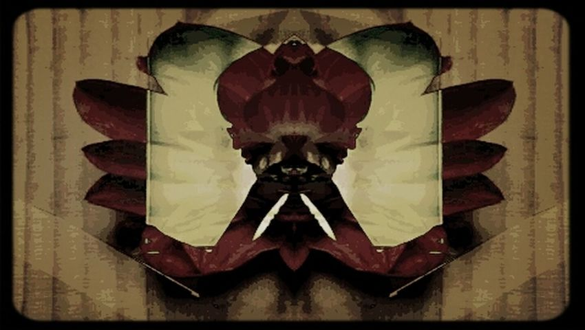 Double Exposure Image Blender Abstract Creative Photography Flowerchild