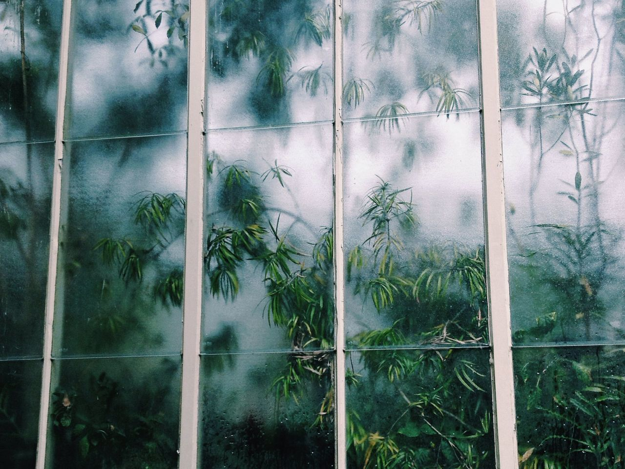window, full frame, indoors, glass - material, transparent