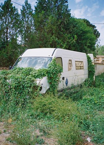 The Street Photographer - 2017 EyeEm Awards 35mm Analogue Photography Nature Outdoors Abandoned Green Color