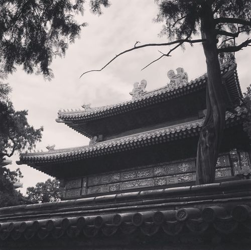 Forbidden city Forbidden City Beijing Built Structure Architecture Roof Low Angle View Building Exterior Eaves Day No People Travel Destinations
