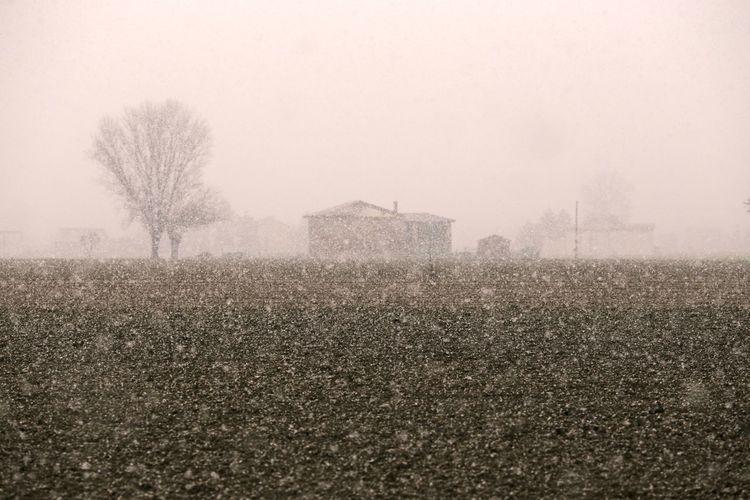 Snowy day.