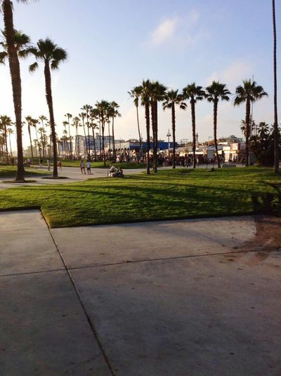 LA Venice Beach, Walking Around,
