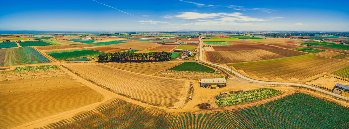 Aerial panorama of crop fields - straight rectangles with rural road on bright summer day Agriculture Australia Australian Landscape Coastline Drone  Field Werribee Aerial Aerial Landscape Aerial Panorama Aerial View Agricultural Land Agriculture Beauty In Nature Day Drone Photography Farm Field High Angle View Landscape Melbourne Nature No People Outdoors Patchwork Landscape Plowed Field Rural Scene Scenics Sky Summer Tranquility