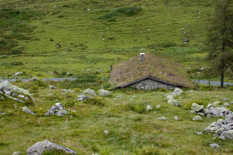 Old Stone House In The Nature Altes Haus Berghütte Old House Mountain Hut Stone House Stein Hütte Water Agriculture Field High Angle View Rural Scene Grass Green Color Landscape