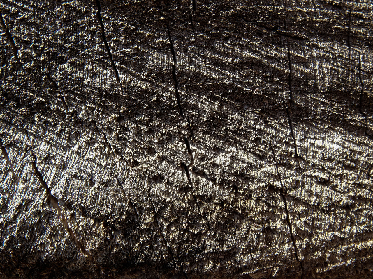 textured, backgrounds, no people, full frame, pattern, wood - material, close-up, nature, indoors, day