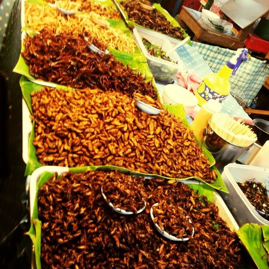 RePicture Travel Thailand Phuket Insects  Bugs Dinner No Thanks
