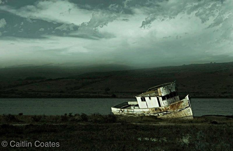 Shipwreck Documentary Landscape Outdoors Nature Lake Boat Taking Photos From My Point Of View EyeEm Best Shots