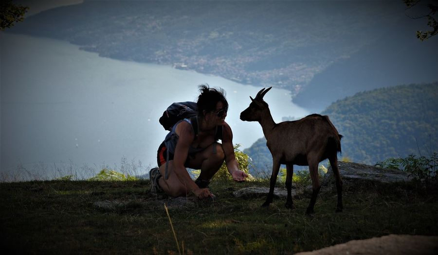 Female hiker with goat on mountain against sea