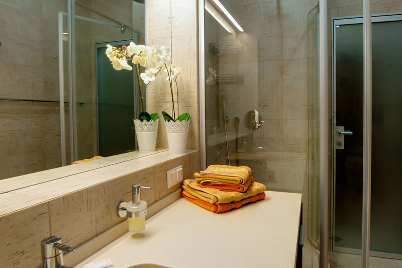 Indoors  Domestic Room Bathroom No People Domestic Bathroom Sink Mirror Household Equipment Home Reflection Home Interior Glass - Material Transparent Hygiene Faucet Flower Architecture Nature Absence Plant Luxury