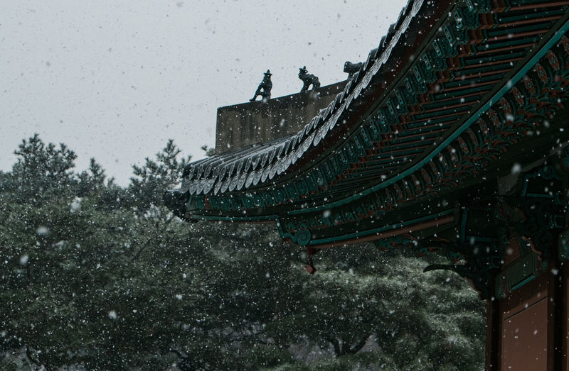 Snowy Changdeokgung Palace, Seoul Architecture_collection Built Structure Changdeokgung Palace Cold Temperature Low Angle View No People Outdoors Royal Palace Of Koprea Seoul Snowy Snoy Tree UNESCO World Heritage Site Winter
