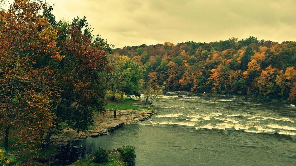 Ohiopyle Landscape Autumn Colors Enjoying The View