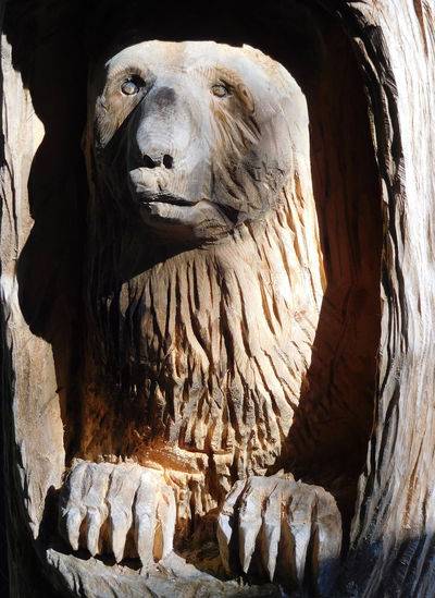 Animal Themes Bear Close-up Light And Shadow Mountain Art No People One Animal Popular Art Representation Sculpture Wooden Sculpture