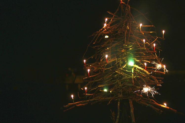 Low angle view of illuminated christmas tree at night