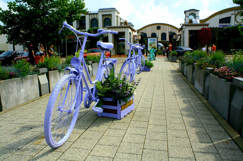 Flower Bicycle Building Exterior Architecture Sky Plant Flower Market In Bloom