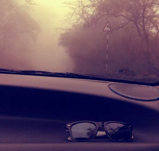 Clouds And Trees Vintage Glasses Car
