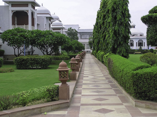 A traditional sandstone path with white buildings and trees on either side, with green lawns and hedges as well Architecture Building Exterior Built Structure Grass Hedge Landscaping No People Outdoors Path Paved Path Plant Rajasthan Resort The Way Forward Tree