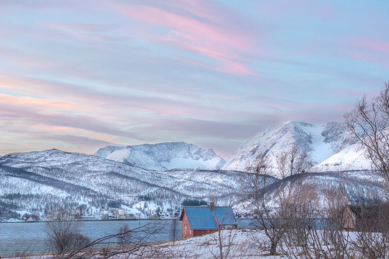 pastel skies Betterlandscapes Landscape Norway Landscape_Collection Travel Destinations Winter Wonderland Troms Lyngen Alps EyeEmNewHere Snow Winter Nature No People Cold Temperature Tree Beauty In Nature Cloud - Sky Snowcapped Mountain Sky Mountain Scenics Outdoors